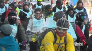 Focus Montreal: Vélo Québec turns 50