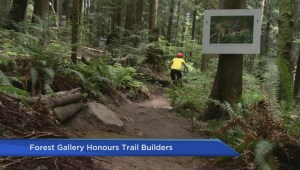 Photo project documents 'trail faeries' of Mount Seymour