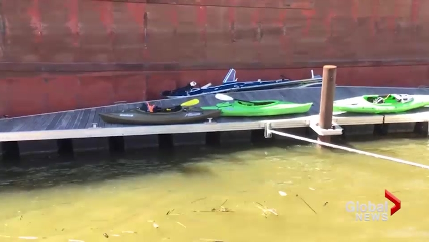 Out-of-control freighter crushes boat, crashes into Green Bay bridge