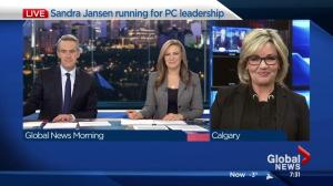 Calgary MLA Sandra Jansen jumping into Alberta PC leadership pool