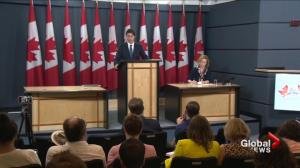 Trudeau has balancing act at G20 Summit