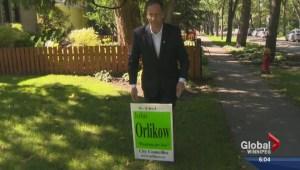 City's former bug expert running for City Hall