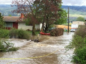 Kelowna woman rescued as property takes on water