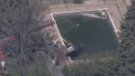 Car removed from pool after elderly woman crashes into it