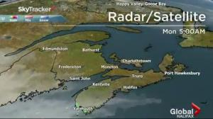 Global News Morning Forecast: July 24