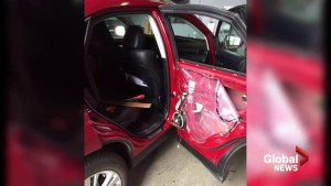 Bear breaks into car  for protein bars