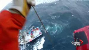 Men take terrifying leap of faith to safety off coast of Newfoundland