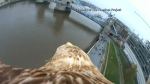 Video shows a true bird's eye view of London, U.K.