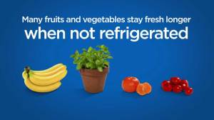 Are you storing your fresh food properly?