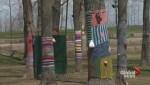 Vaudreuil yarn bombing