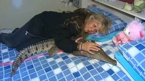 Australian woman regularly sleeps with crocodile