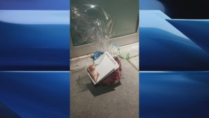RAW: Gift-wrapped pig's head left outside Quebec City mosque