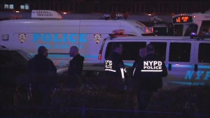 Two NYPD officers shot while on patrol