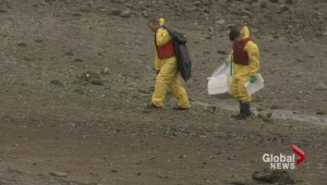 Cleanup of English Bay oil spill continues