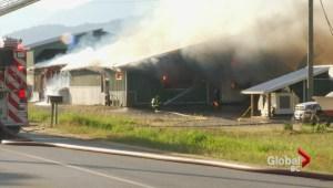 Cattle Barn Fire