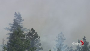 Huckleberry Fire