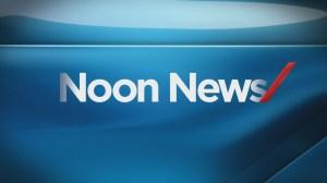 Noon News: Feb 8