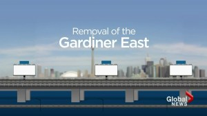 Possible options for the Gardiner under consideration
