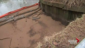 Permanent solution still not in place for Toronto's Don River fuel spill