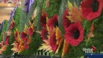 Donations down for Calgary Poppy Fund