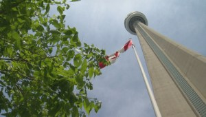 'Happy birthday CN Tower': Toronto's most iconic structure celebrates 40th anniversary