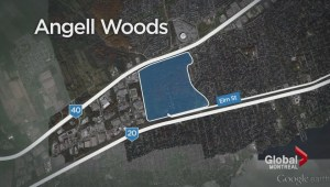Angell Woods gets conservation status