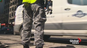 Police must ditch camo pants: Quebec