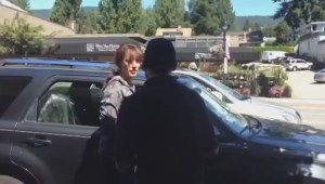 Actress Jennifer Beals confronted after leaving dog in hot car