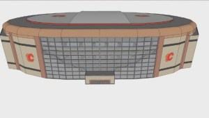 14-year-old designs new Calgary arena