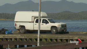 Whale watching accident: Search continues for missing passenger