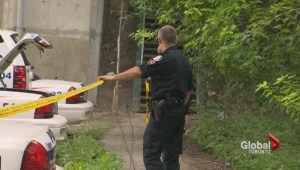 Body found in Toronto's Rosedale Valley