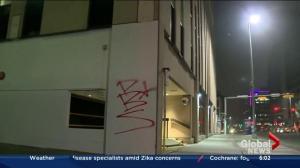 Calgary spray-painting spree