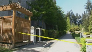 Suspect of UBC sexual assault in court