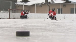 Manitobans vying for spot on National Sledge Hockey team