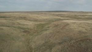 Conservation project announced near Grasslands National Park in Saskatchewan