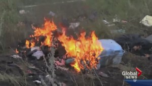 Local Ukrainians calling for action after Malaysian Airlines jet shot down