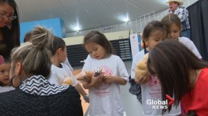 Kainaiwa Childrens Services celebrates 20 years