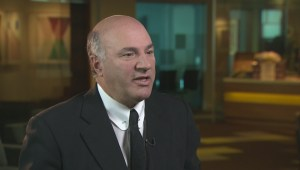 Kevin O'Leary still not pulling the trigger on Conservative party leadership bid
