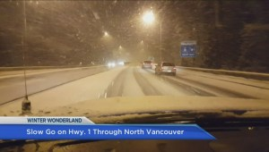 Metro Vancouver sees first snowfall of the season