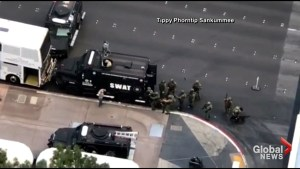 Man surrenders after SWAT team uses flash bang on Vegas bus after fatal shooting, standoff