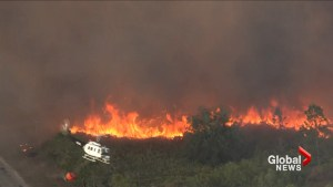 Wildfires spreading throughout the state of Florida