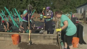Hjorth Road Elementary gets a new playground