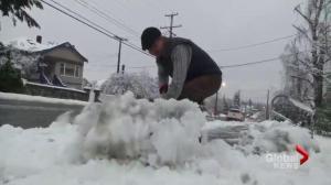 Parts of Vancouver Island snowed under