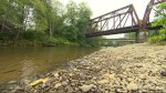 Caught on camera: man pushes 4-year-old off bridge into water because the kid 'wanted to jump'