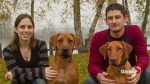 Langley family offer reward for return on their missing dogs
