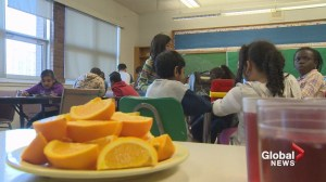 Education a large focus of new Nova Scotia budget