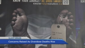 Concerns raised as overdose deaths rise