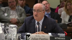 Julian Fantino vs. veterans