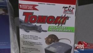 Open House: Winter pest control