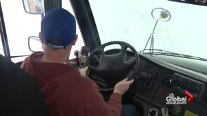 N.B. school bus drivers and custodians to receive mental health awareness training